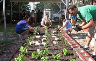 corperate-gardening