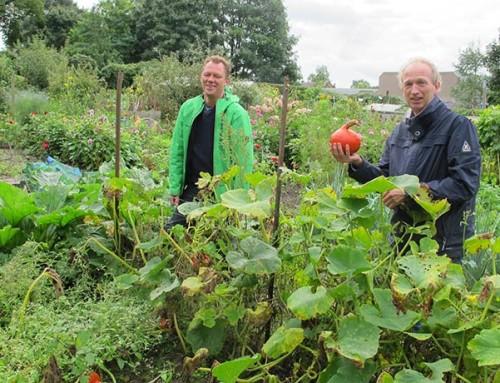 Cursus biologisch tuinieren in de stad