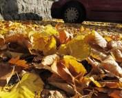 blad voor mulch