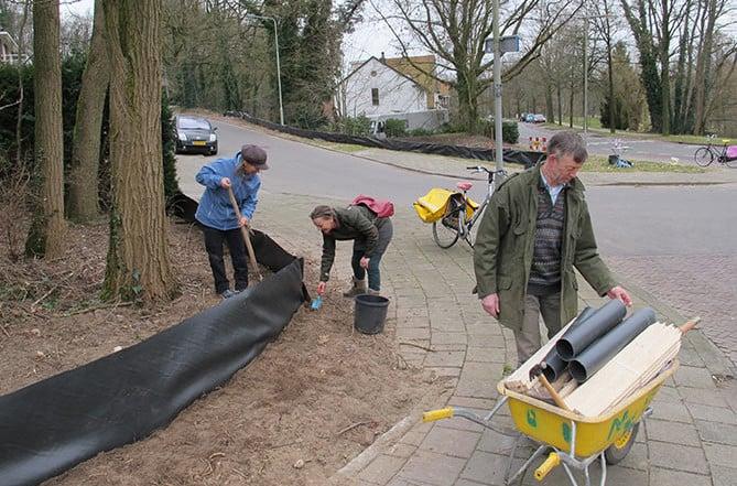 paddenwerkgroep Arnhem