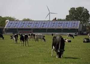solarenergyroof-Arnhem
