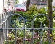 boomspiegel_duurzamewijk