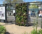 groen-bushalte Arnhem_Geert Elemans