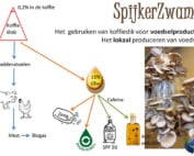 Spijkerzwam-Arnhem