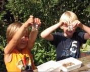 knutselende-kinderen-Kids Natuurclub