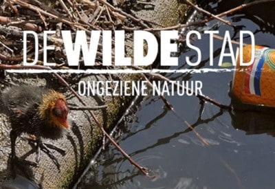 film-De-Wilde-Stad-Ruben Smit-Mark Verkerk