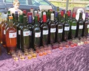 Wilde Wijnen-biologische wijnen