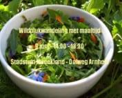 cover-Facebook-Rijnzoet-Wildplukwandeling en maaltijd