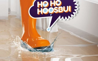 hohohoosbui-Subsidieregeling Waterschap Rivierenland