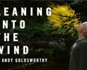 Leaning-into-the-wind-Andy-Goldsworthy-m