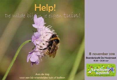 arnhem-zoemt-wilde bijen in je tuin