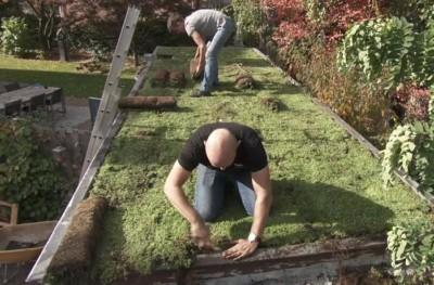 Molenbeke-groene-daken