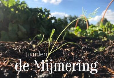 tuinderij-de-mijmering-lokaal geteelde groenten