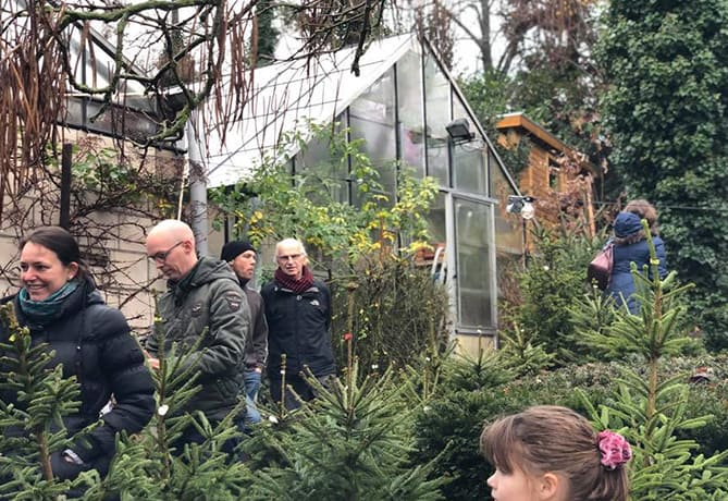 kweekland-adoptie kerstbomen met kluit