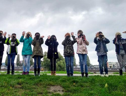 Natuurcentrum Arnhem lanceert zomerprogramma vol kinderactiviteiten
