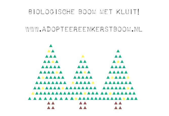 biologische-kerstboom-met-kluit